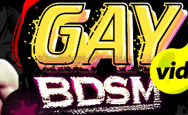gay bdsm art